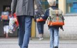 Государственные школы против обучения на дому