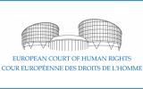 Фонд семьи и демографии отстаивает запрет пропаганды гомосексуализма среди детей перед Европейским Судом по правам человека